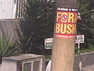 bushpinheiros2.jpg